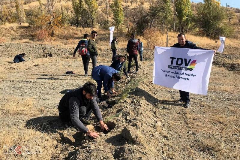 Elazığ'da 250 binden fazla ağaçlandırma yapıldı