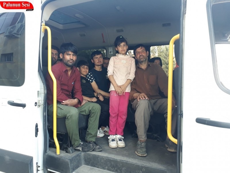 Kaçak Göçmenler İstanbul diye Palu`ya Getirildi