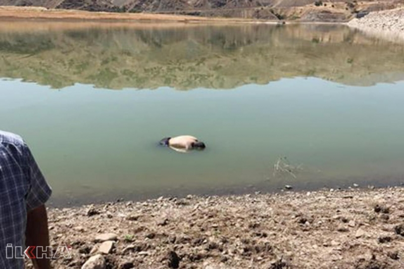 Keban Baraj Gölü'nde bir ceset bulundu