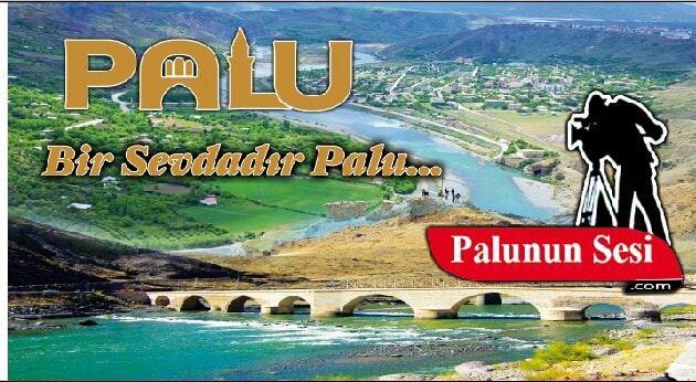 Palu ve Kovancılar İlçelerinde toplam vaka sayısı 228