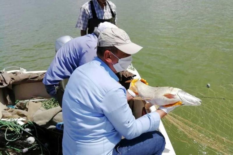 Palu`da Kaçak Avlanan Balıkçıların Ağlarına El Konuldu