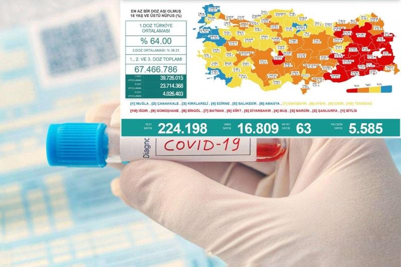 Türkiye'de Covid-19 vaka ve vefat sayısı artıyor