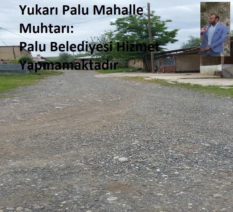 Yukarı Palu Mahalle Muhtarı: Palu Belediyesi Hizmet Yapmamaktadır